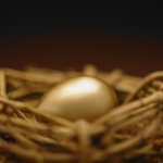 26 Oct 2004 --- Golden Nest Egg --- Image by © Royalty-Free/Corbis