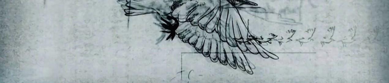 Leonardo wings